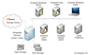 chart-amanda-network-no-brd